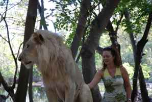 lions parc safaris adventures